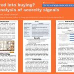 CURE: Explorations in Business Research: Scared into buying? An analysis of scarcity signals