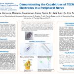 CURE: Engineering Interdisciplinary Undergraduate Research